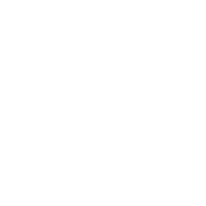 Filici Immigration white logo